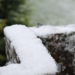 snowy-rail